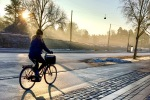 cyclist in the Copenhagen morning mist